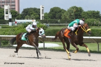 Skip the Act (FL) with jockey Jose Rodriguez takes 3rd