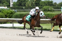 Skip the Act (FL) with jockey Jose Rodriquez on board takes 3rd.