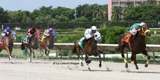 Racing photo of Skip the Act (FL) with jockey Jose Rodriguez