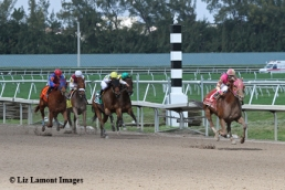 Groupie Doll (KY) takes the lead to win the Hurricane Bertie Stakes GIII at Gulfstream Park in Hallandale Beach, Florida_IMG_4094B